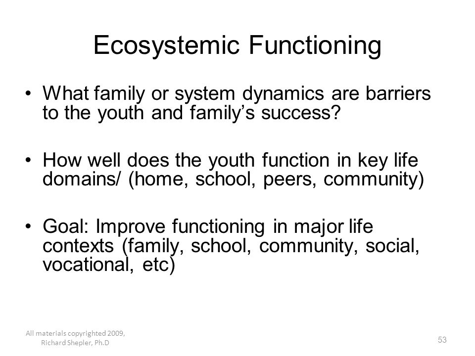 Ecosystemic Functioning