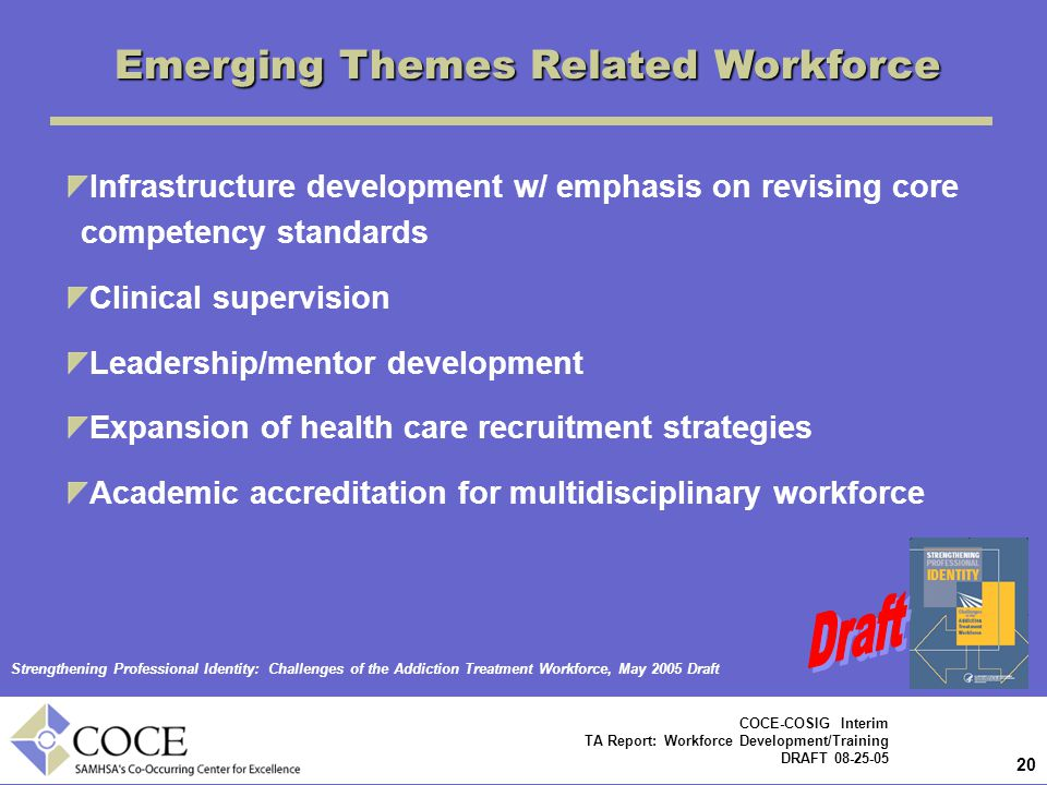 Emerging Themes Related Workforce