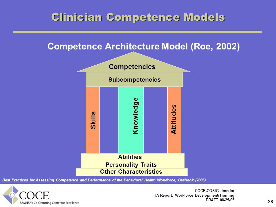 Competence Architecture Model (Roe, 2002)