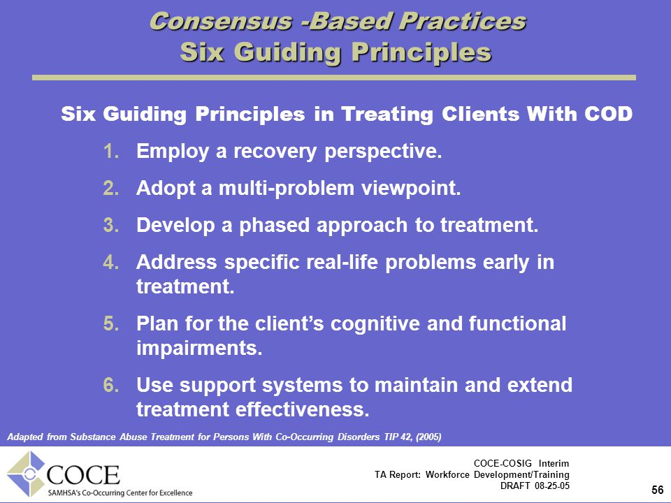 Consensus -Based Practices Six Guiding Principles