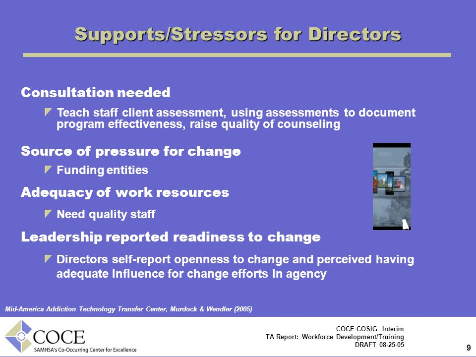 Supports/Stressors for Directors