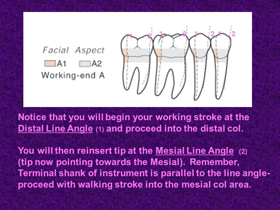 Notice that you will begin your working stroke at the