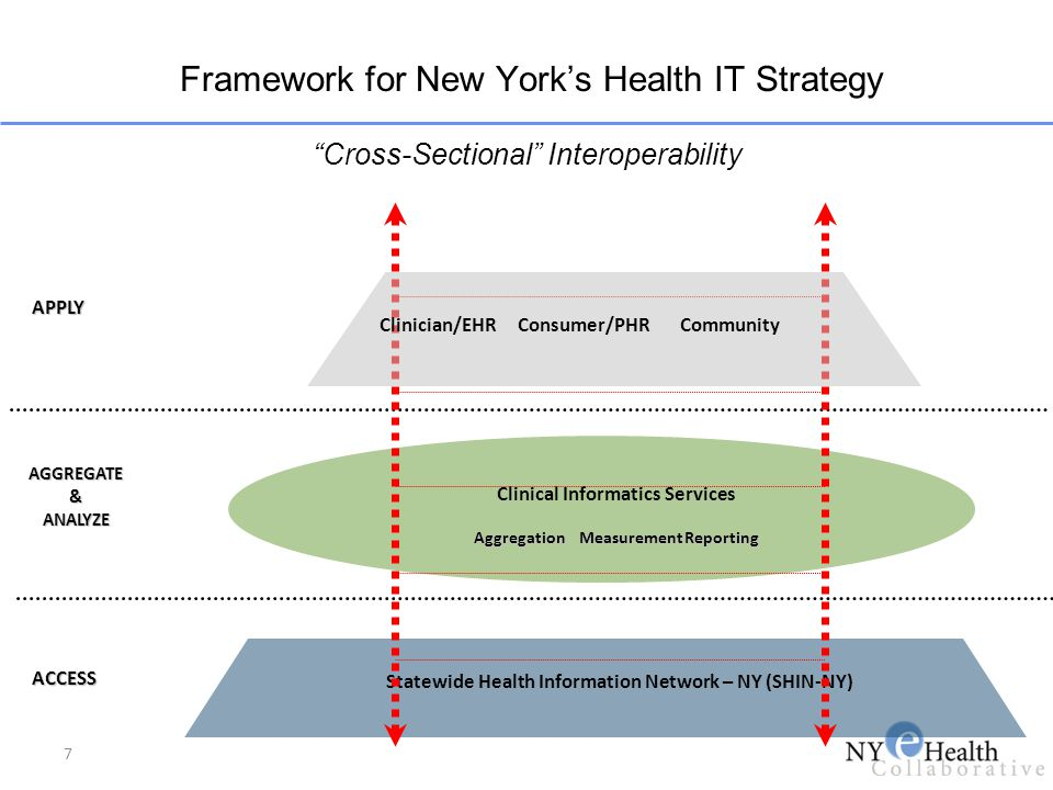 Framework for New York's Health IT Strategy