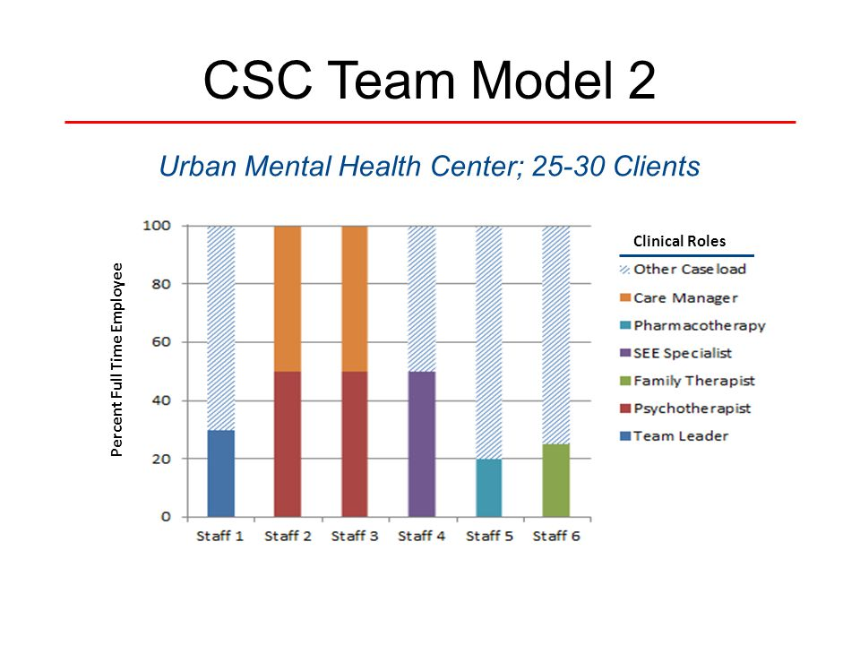 CSC Team Model 2 Urban Mental Health Center; 25-30 Clients