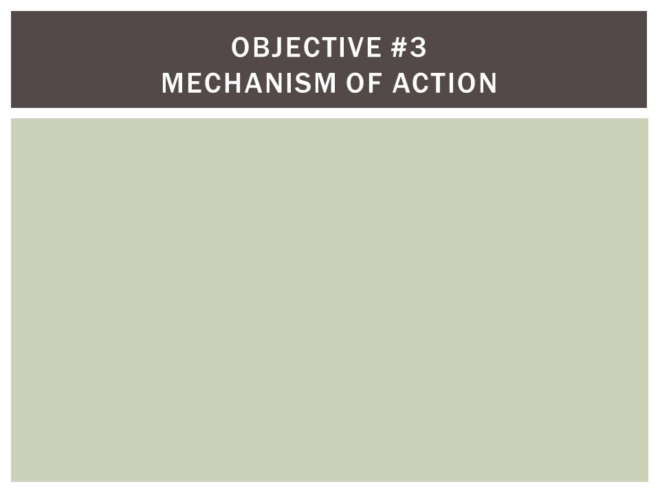 Objective #3 Mechanism of Action