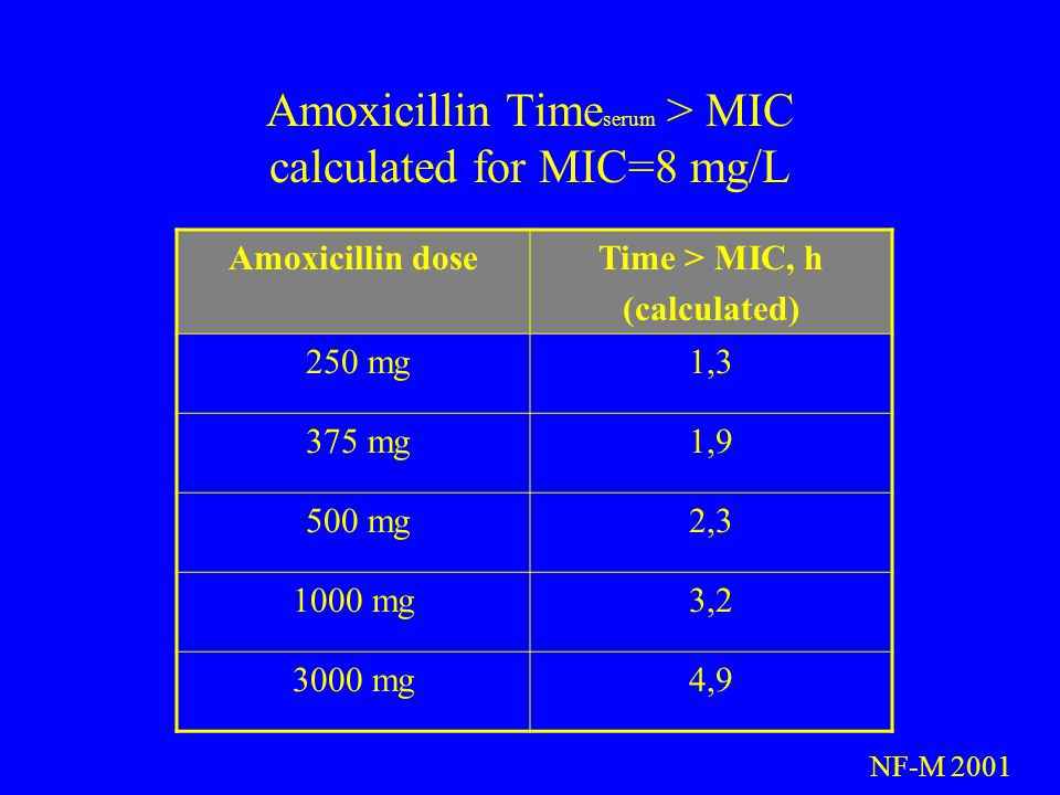 Amoxicillin Timeserum > MIC calculated for MIC=8 mg/L