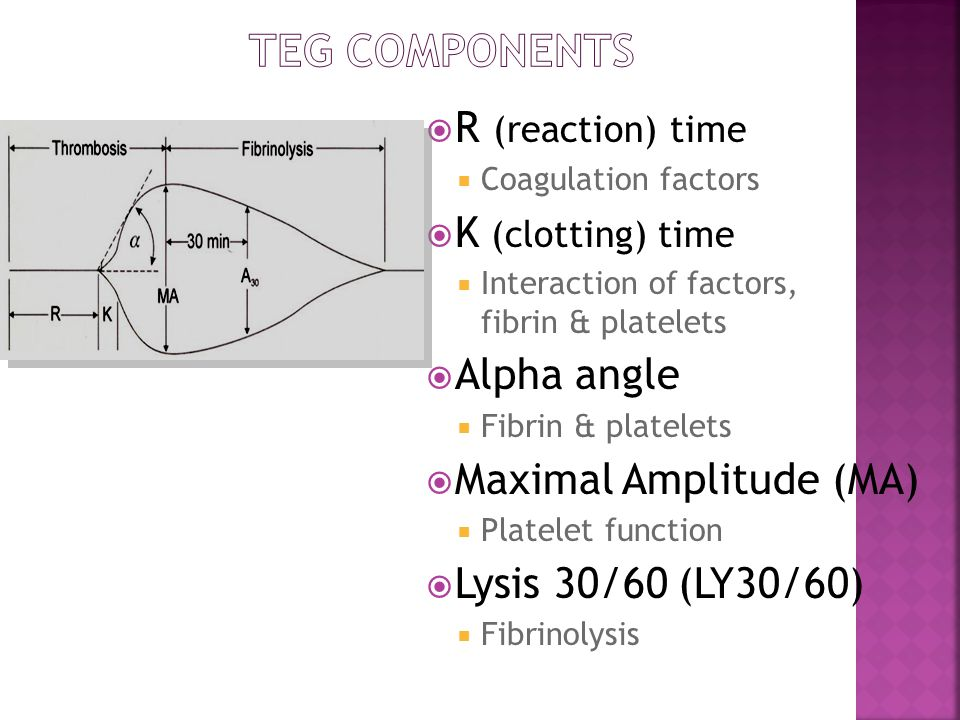 TEG Components R (reaction) time K (clotting) time Alpha angle