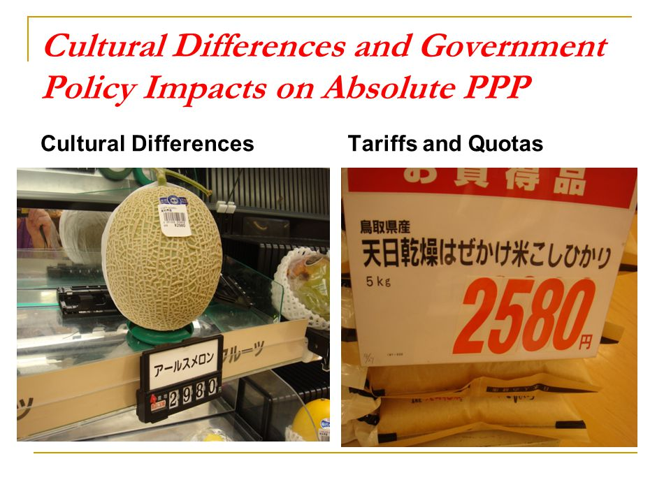 Cultural Differences and Government Policy Impacts on Absolute PPP