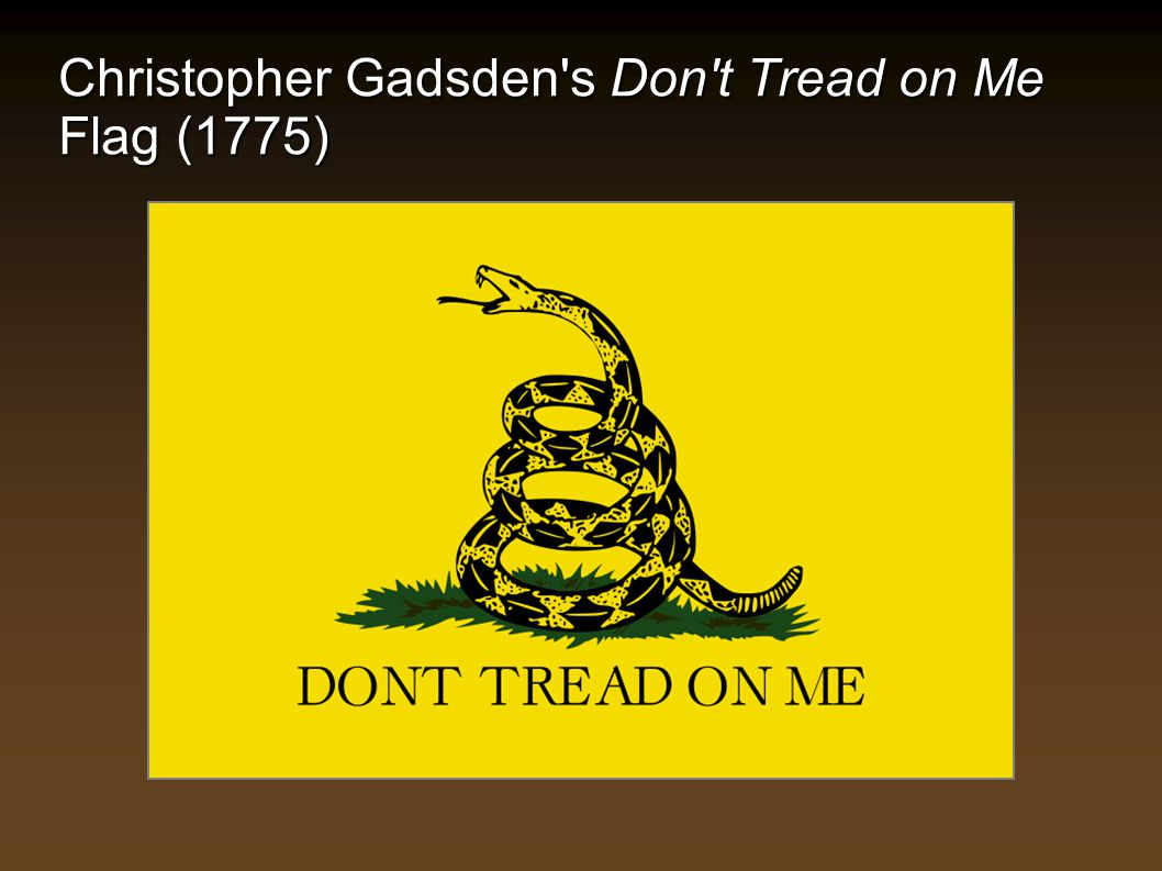 Christopher Gadsden s Don t Tread on Me Flag (1775)