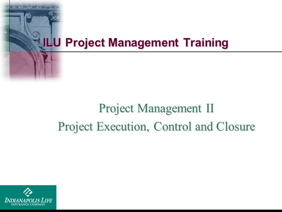 ILU Project Management Training