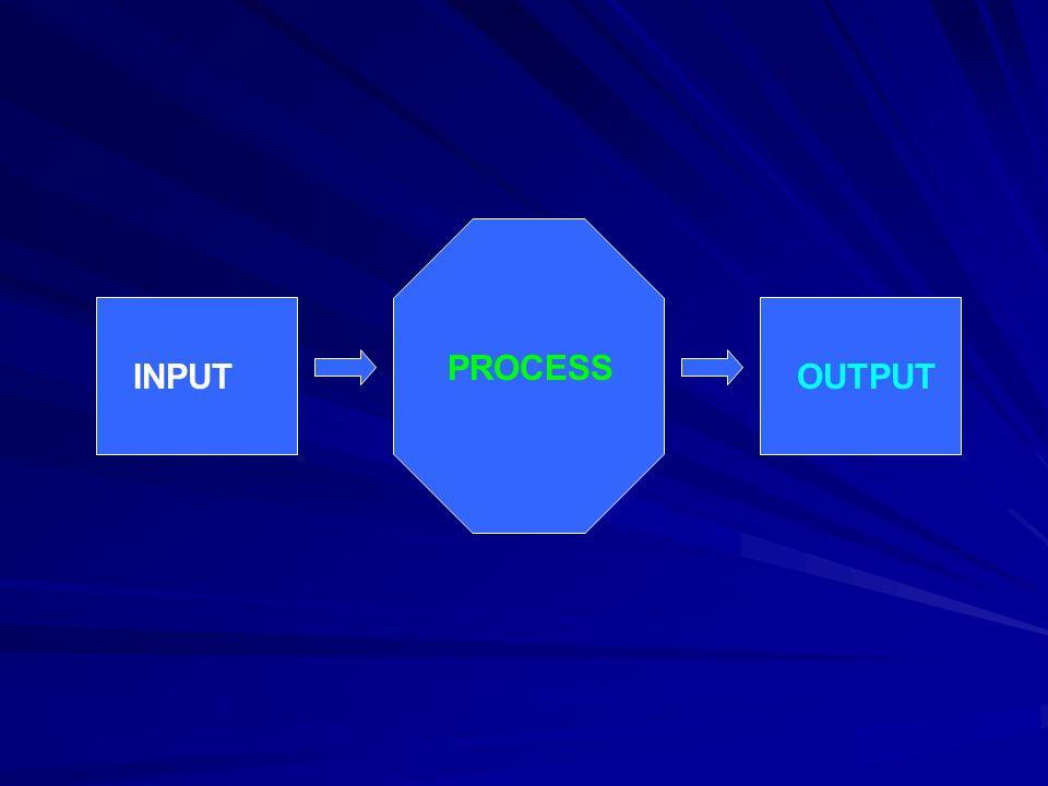 PROCESS INPUT OUTPUT