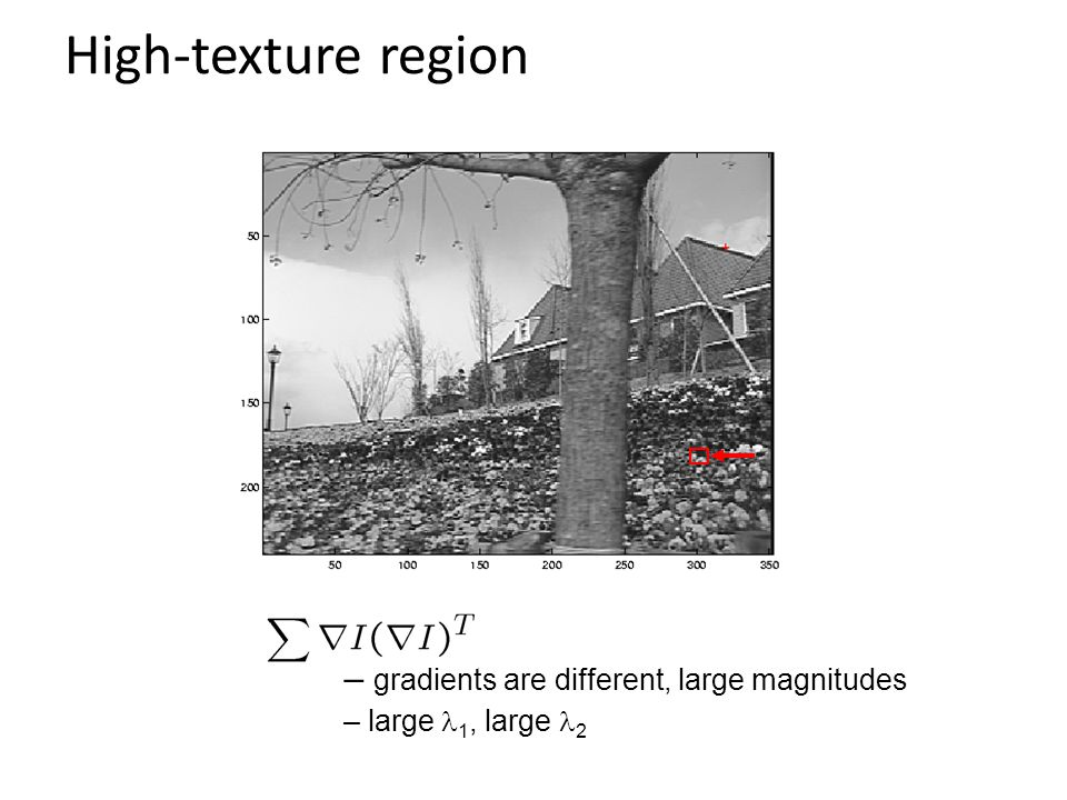 High-texture region gradients are different, large magnitudes