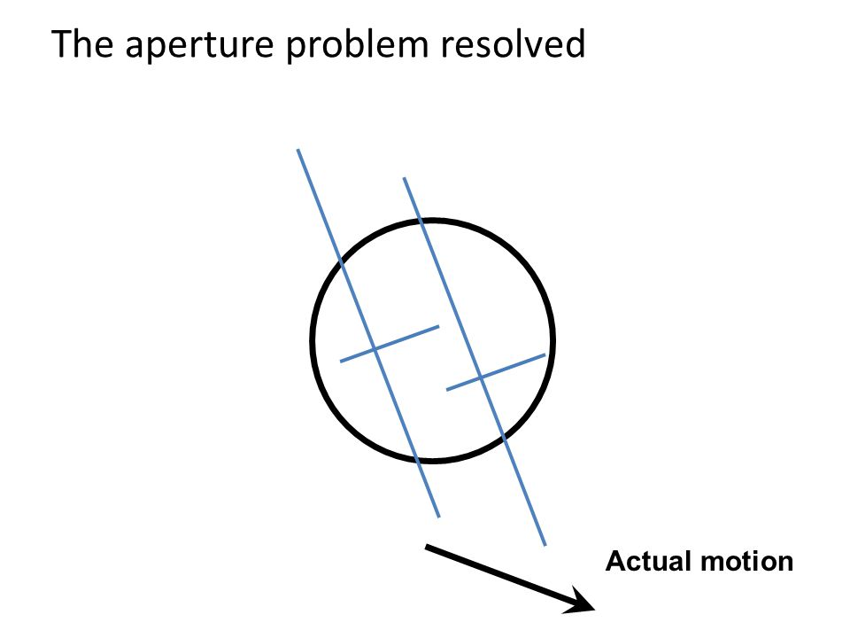 The aperture problem resolved