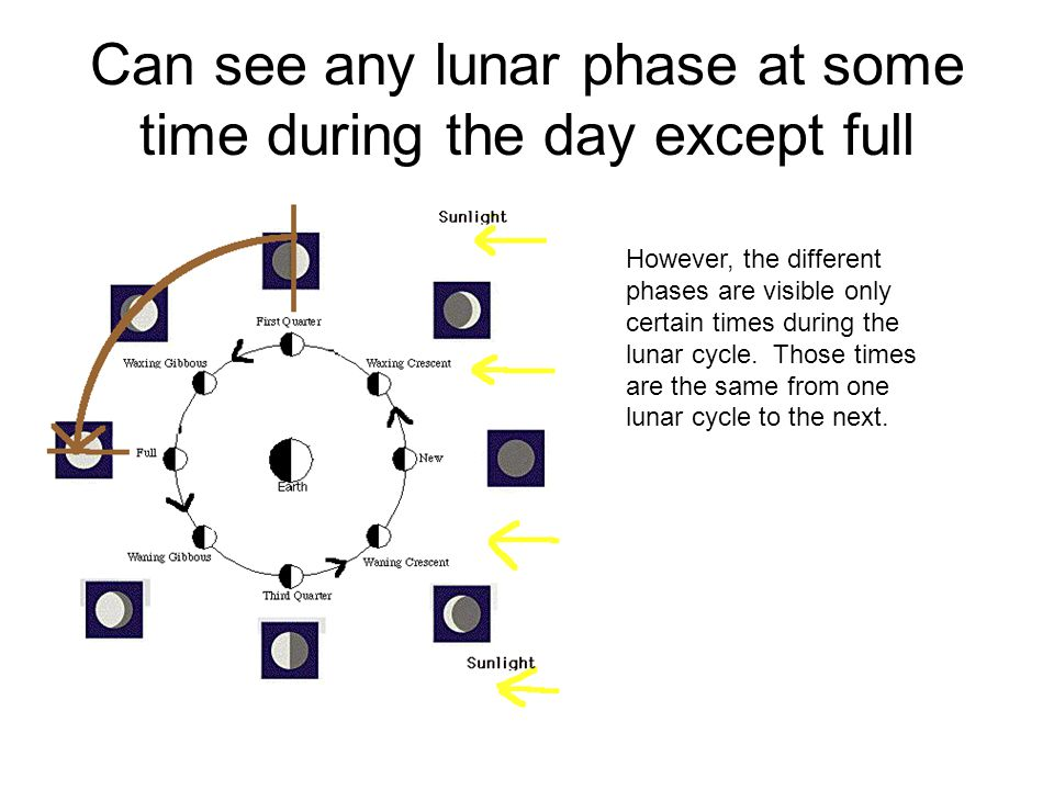 Can see any lunar phase at some time during the day except full