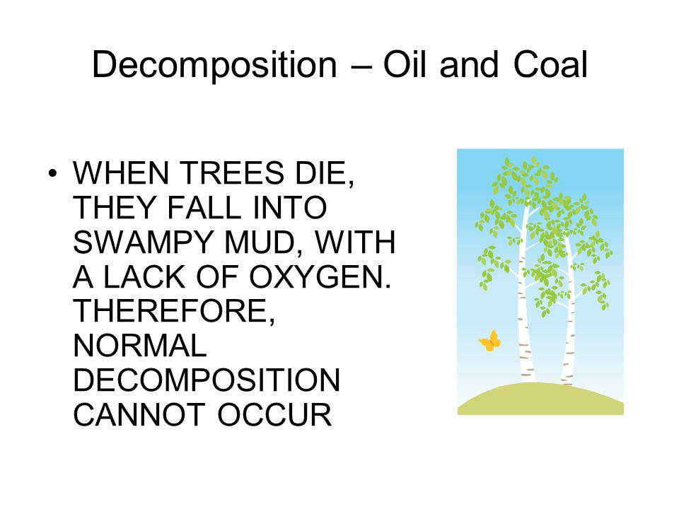 Decomposition – Oil and Coal