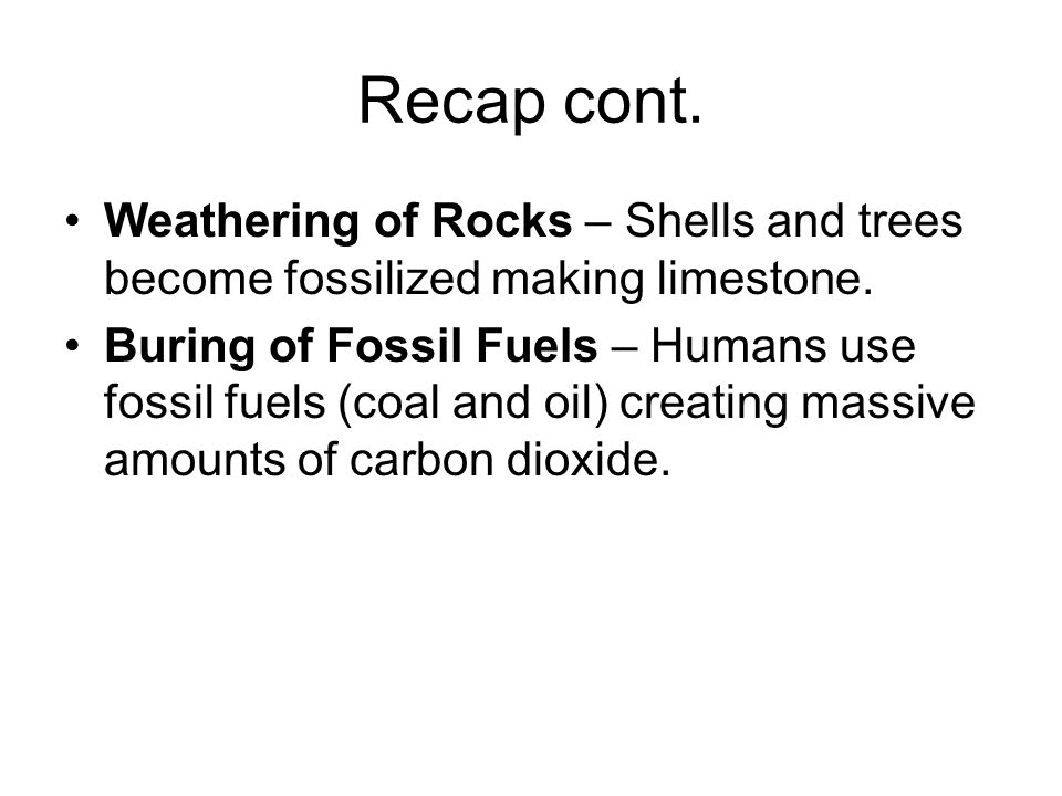 Recap cont. Weathering of Rocks – Shells and trees become fossilized making limestone.