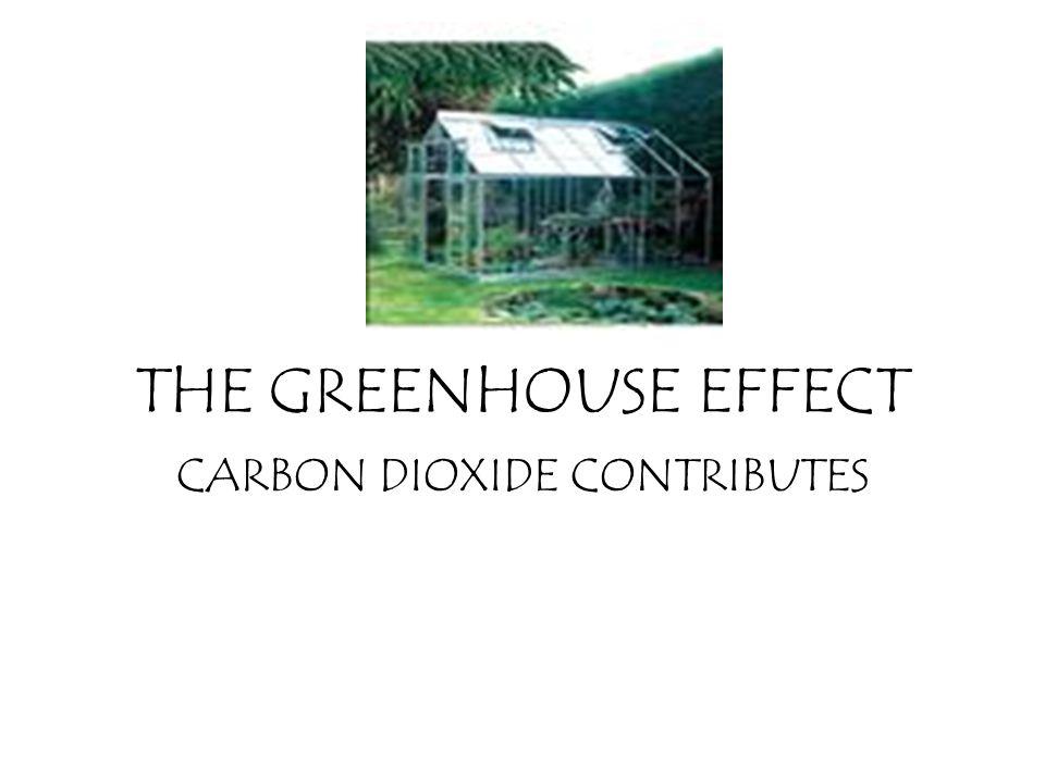 CARBON DIOXIDE CONTRIBUTES