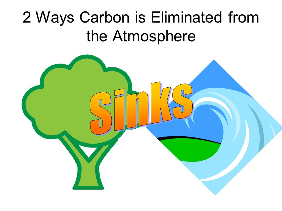 2 Ways Carbon is Eliminated from the Atmosphere