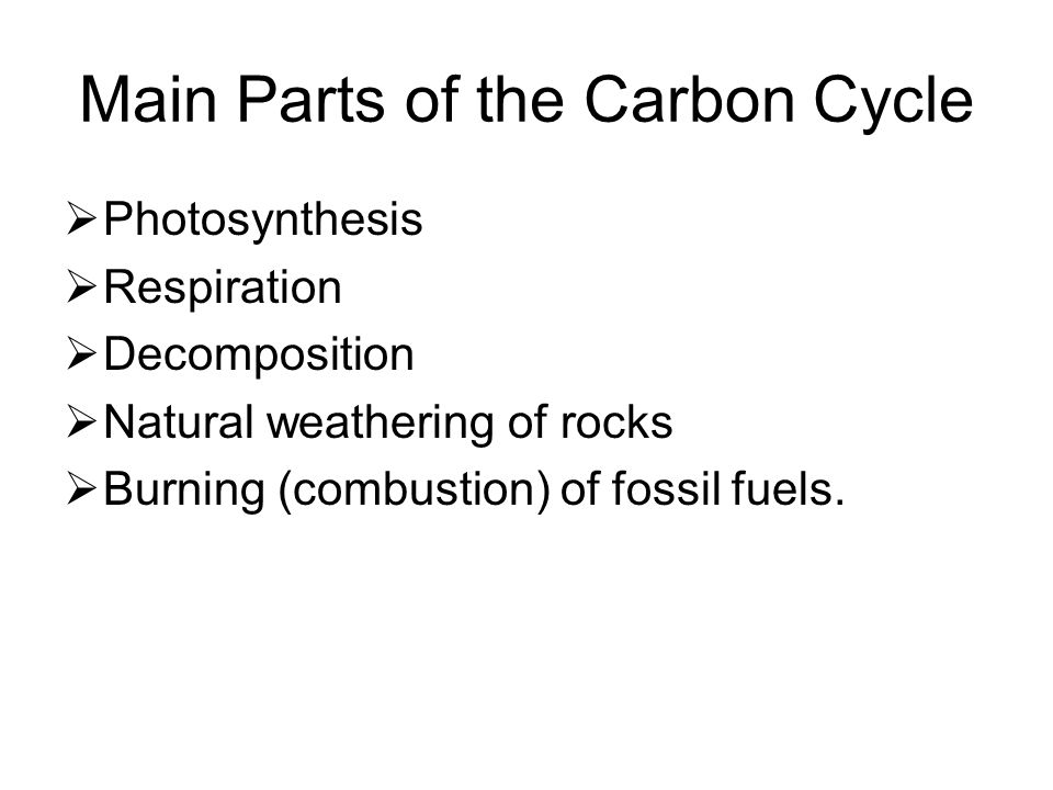 Main Parts of the Carbon Cycle