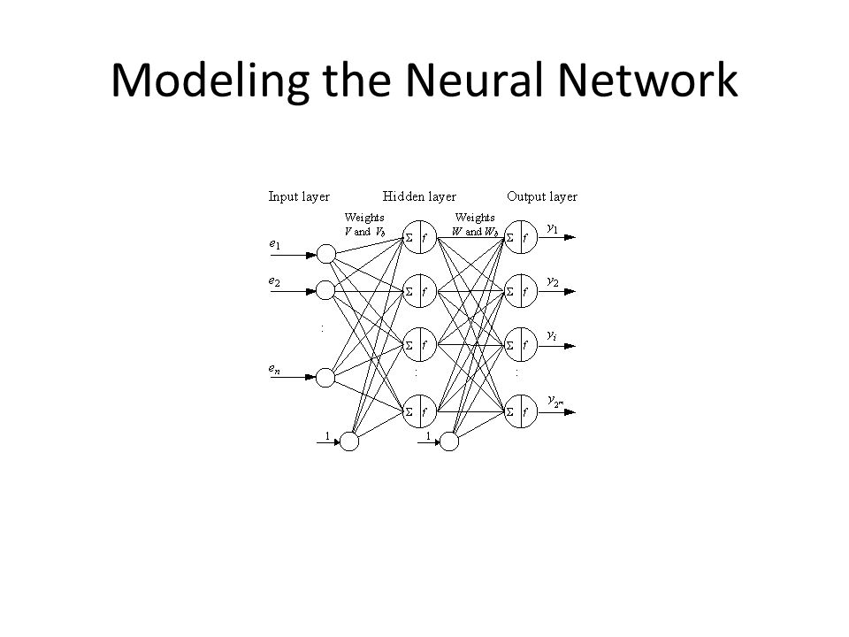 Modeling the Neural Network