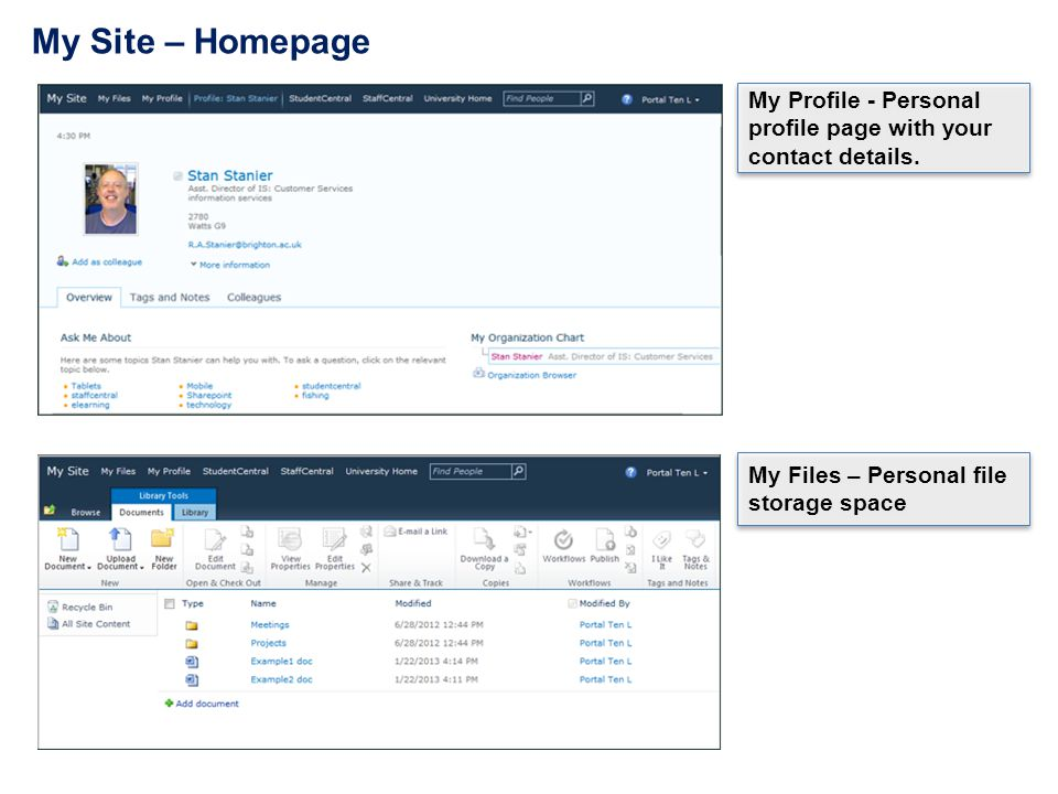 My Site – Homepage My Profile - Personal profile page with your contact details.