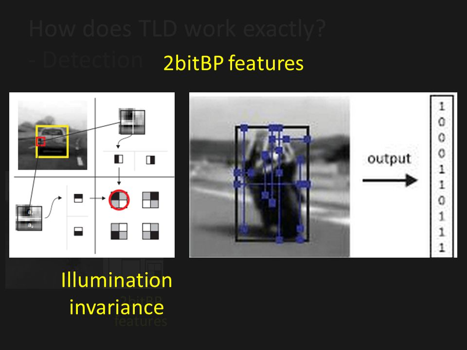 How does TLD work exactly - Detection