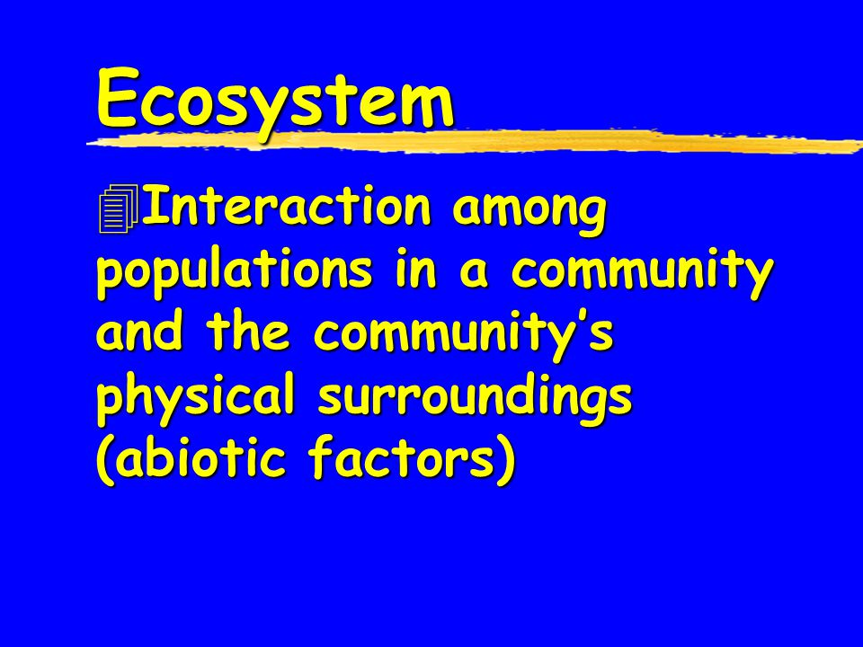 Ecosystem Interaction among populations in a community and the community's physical surroundings (abiotic factors)