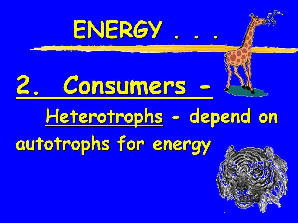 2. Consumers - ENERGY . . . Heterotrophs - depend on