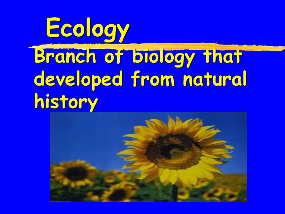 Ecology Branch of biology that developed from natural history