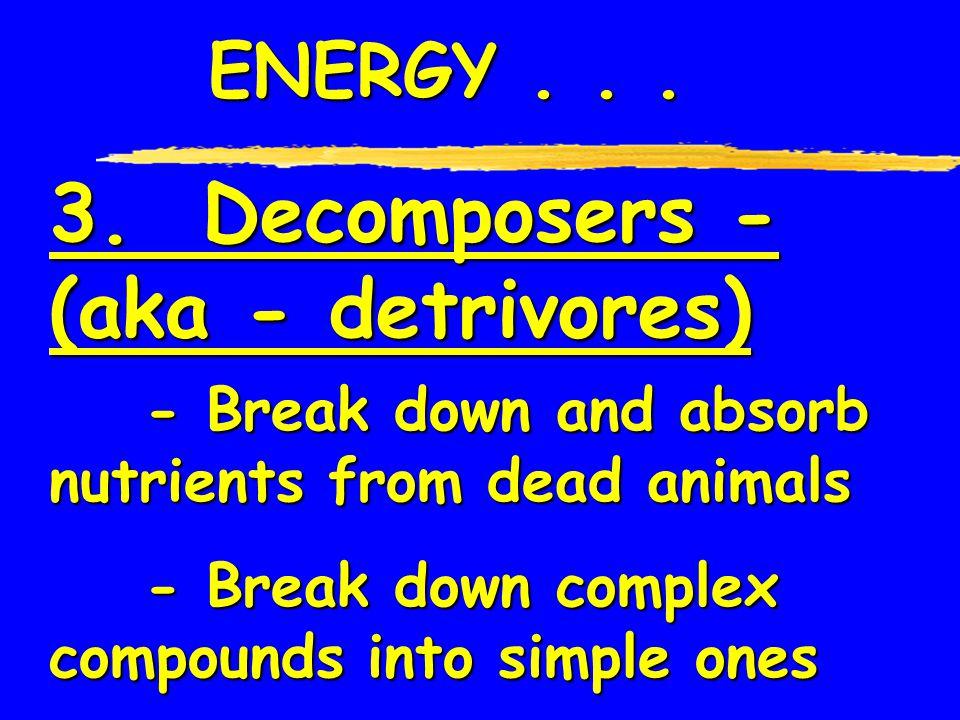 3. Decomposers - (aka - detrivores)