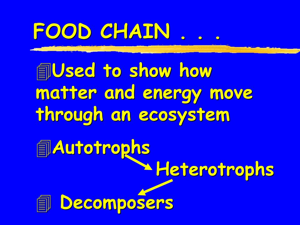 FOOD CHAIN . . . Used to show how matter and energy move through an ecosystem. Autotrophs Heterotrophs.