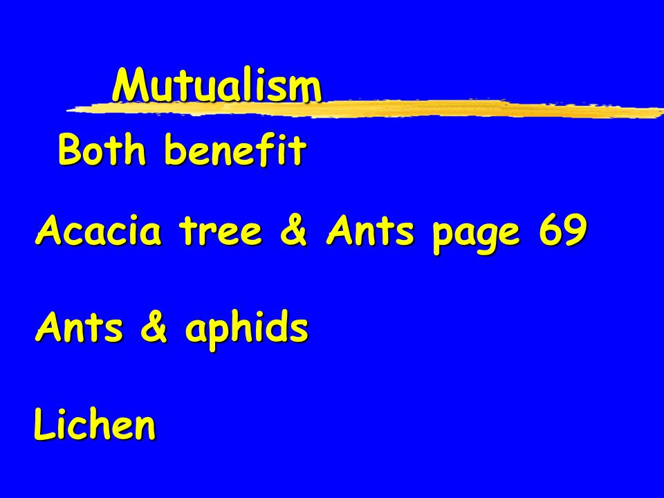Mutualism Both benefit Acacia tree & Ants page 69 Ants & aphids Lichen