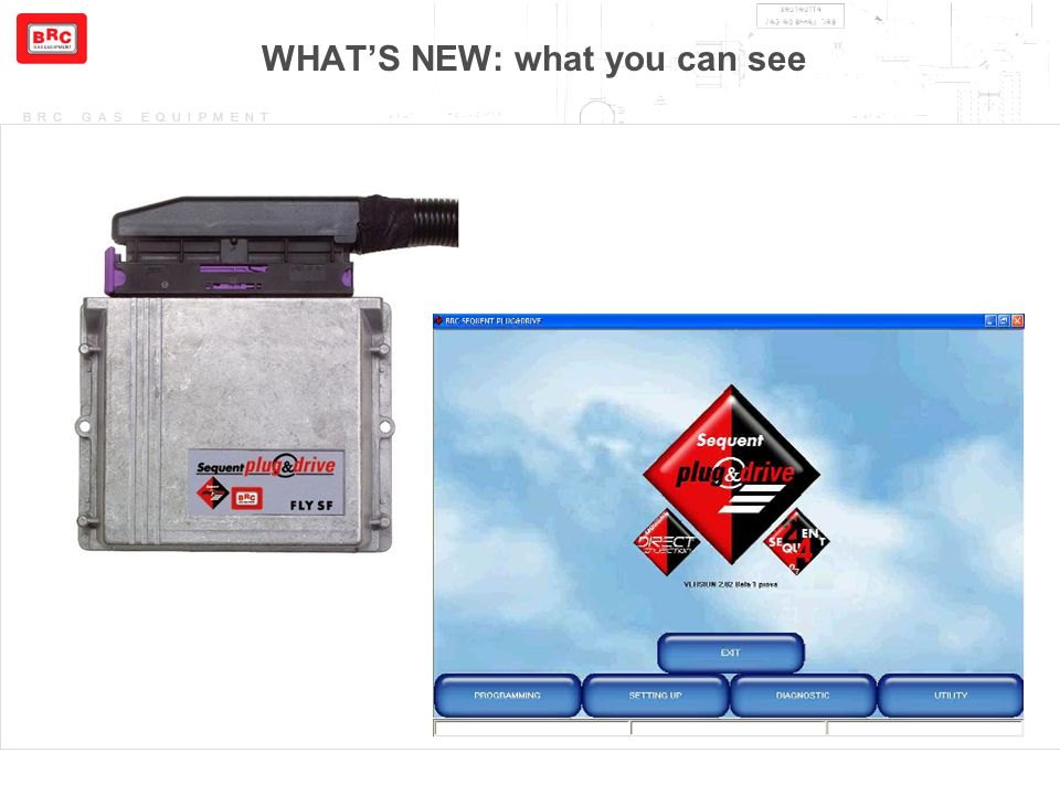 WHAT'S NEW: what you can see