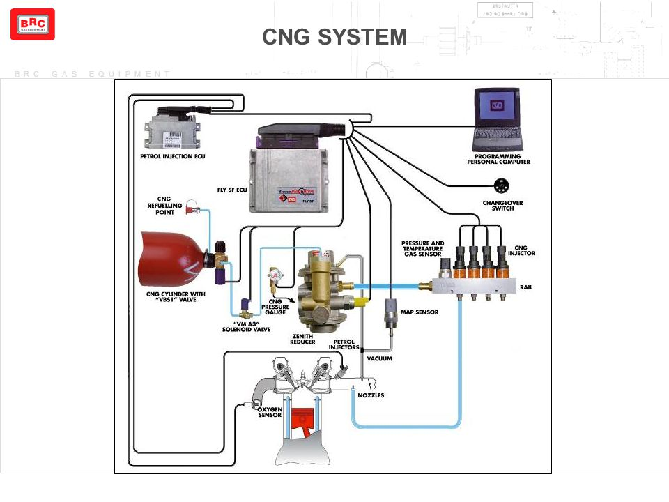 CNG+SYSTEM+Concetti+Base+dei+Sistemi+Sequent+6 sequent plug & drive lpg and cng ppt video online download landi renzo cng kit wiring diagram at bayanpartner.co