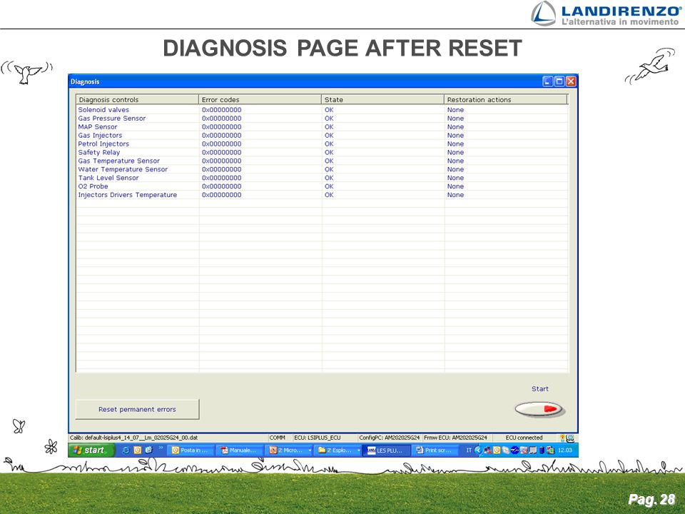 DIAGNOSIS PAGE AFTER RESET