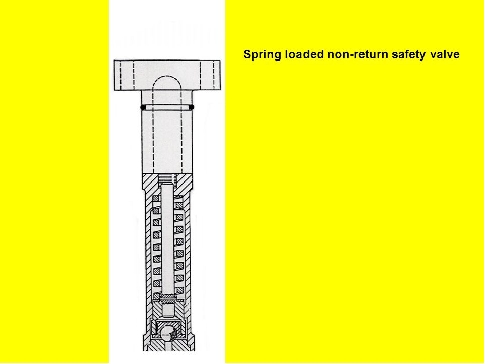 Spring loaded non-return safety valve