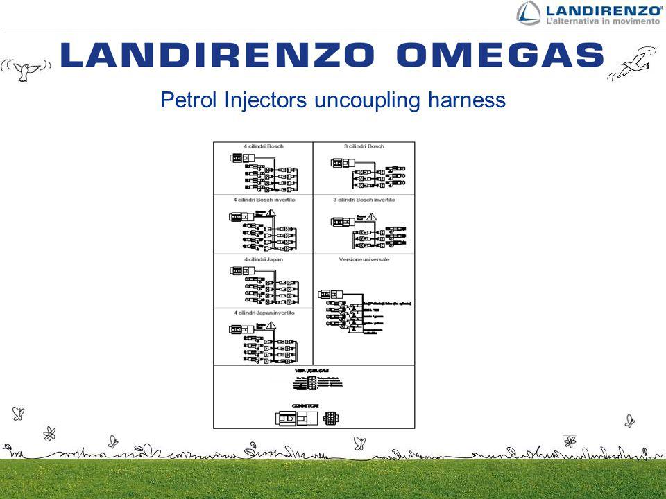 Petrol Injectors uncoupling harness