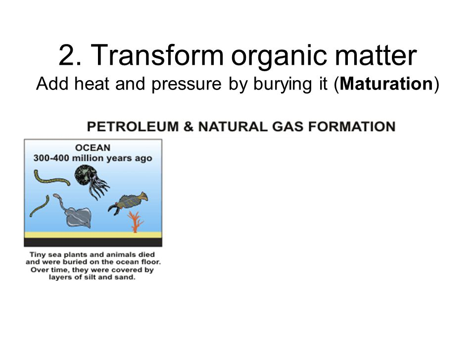 2. Transform organic matter Add heat and pressure by burying it (Maturation)