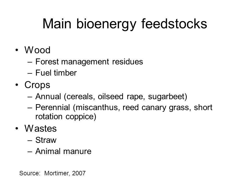 Main bioenergy feedstocks