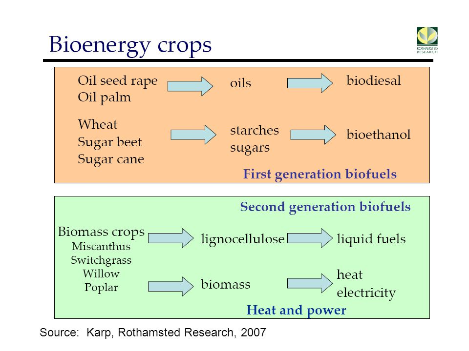 Source: Karp, Rothamsted Research, 2007