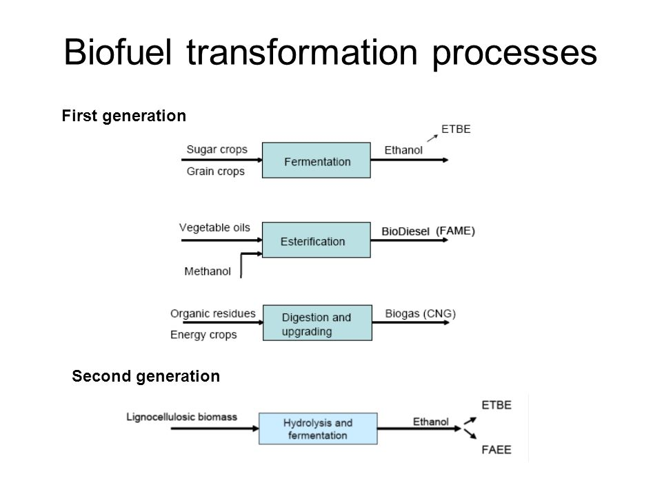 Biofuel transformation processes
