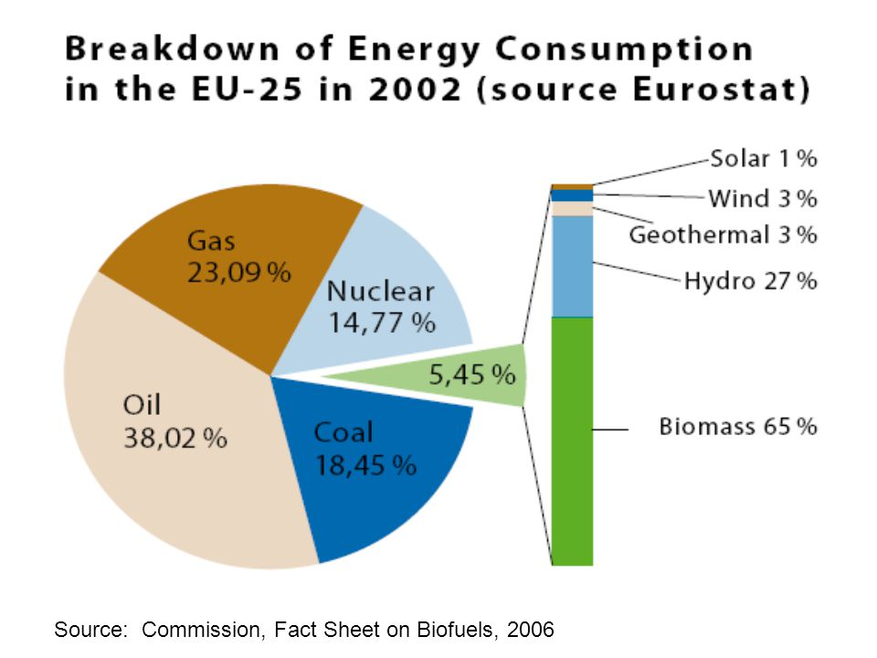Source: Commission, Fact Sheet on Biofuels, 2006