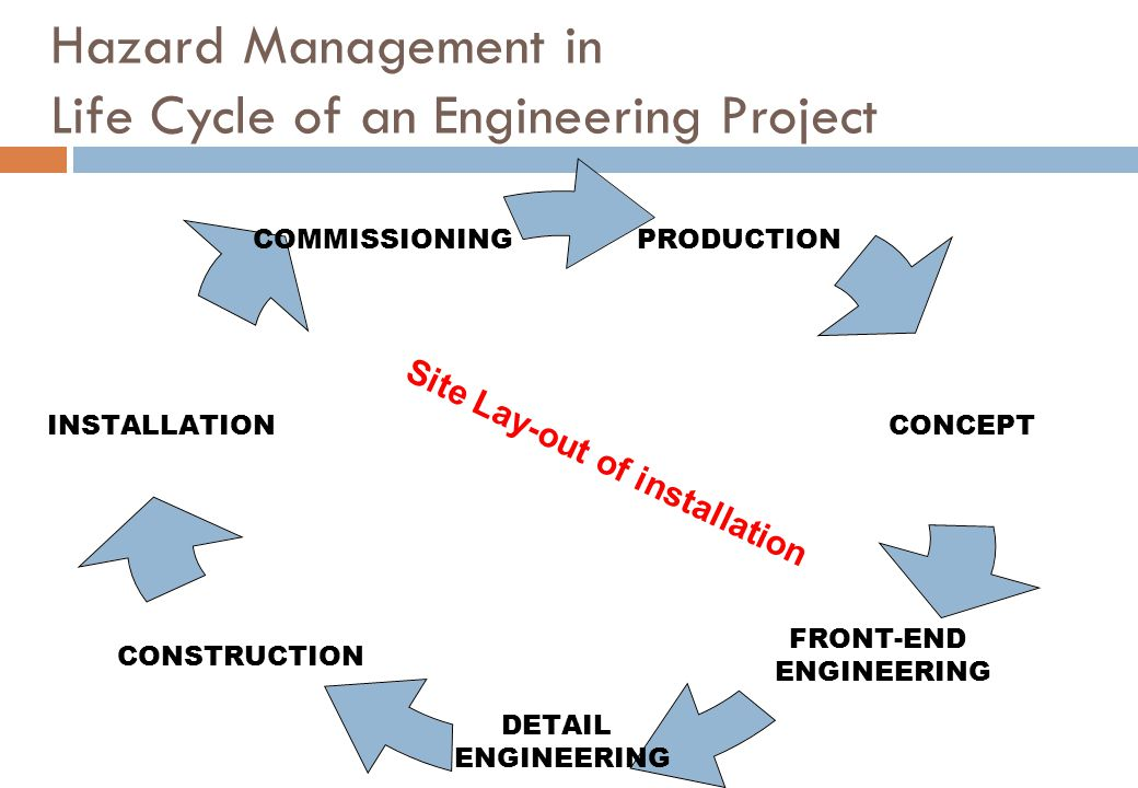 Hazard Management in Life Cycle of an Engineering Project