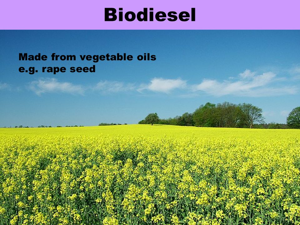 Biodiesel Made from vegetable oils e.g. rape seed