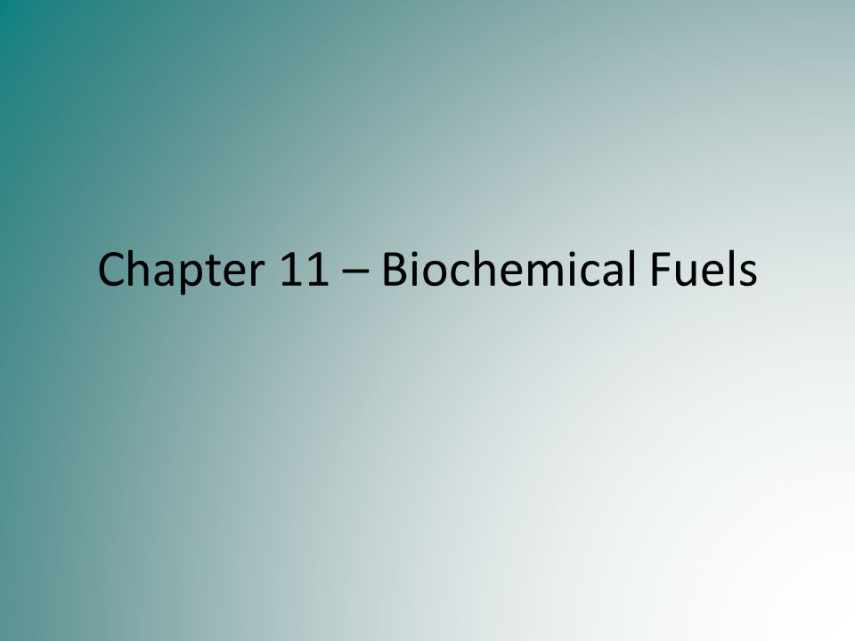 Chapter 11 – Biochemical Fuels