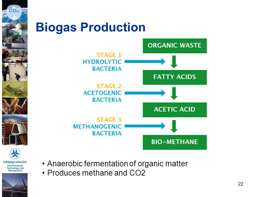 Biogas Production Anaerobic fermentation of organic matter