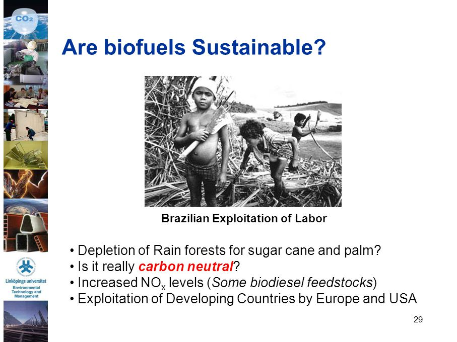 Are biofuels Sustainable