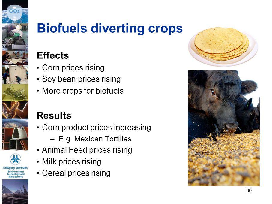 Biofuels diverting crops