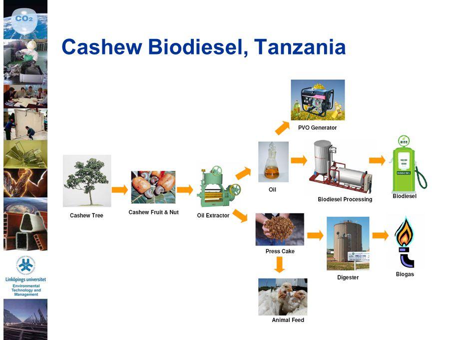 Cashew Biodiesel, Tanzania