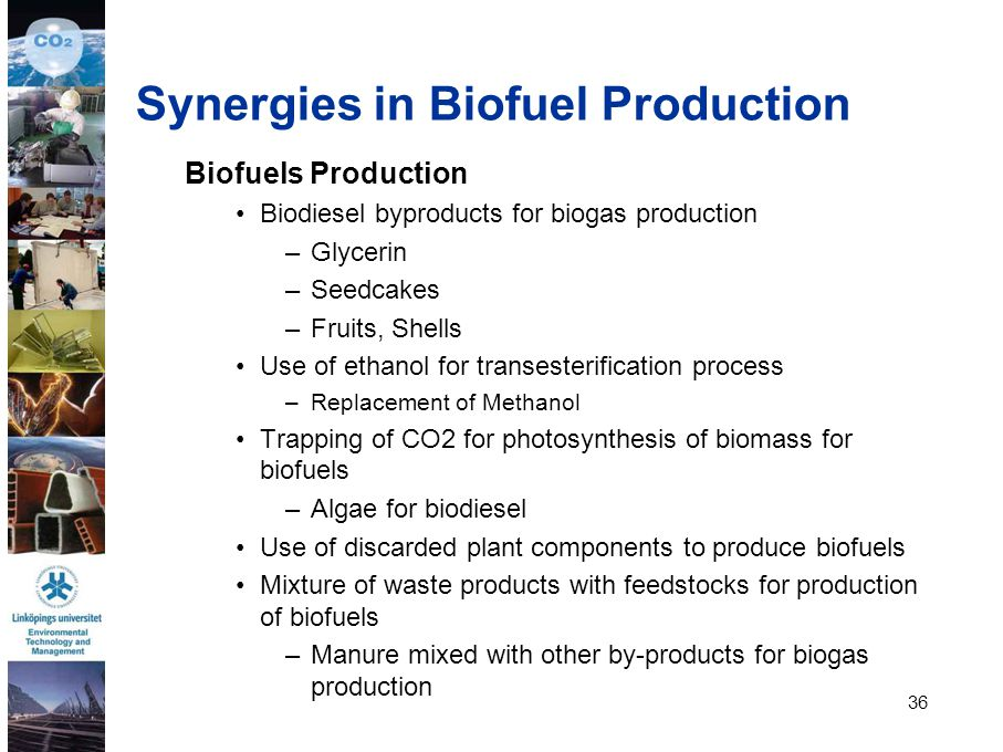 Synergies in Biofuel Production